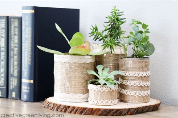 Recycled Succulent Planters