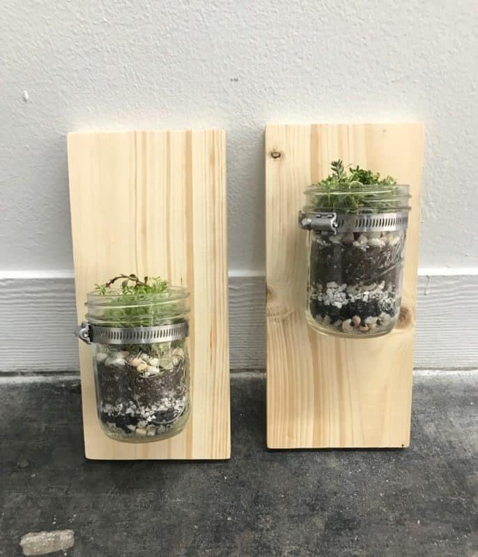 Wall Mounted Mason Jar Planter