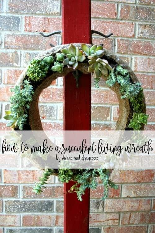 Succulent Living Wreath