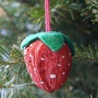 Walnut Strawberry