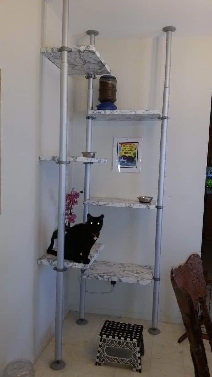 11 Amazing Diy Cat Tree Ideas Simple